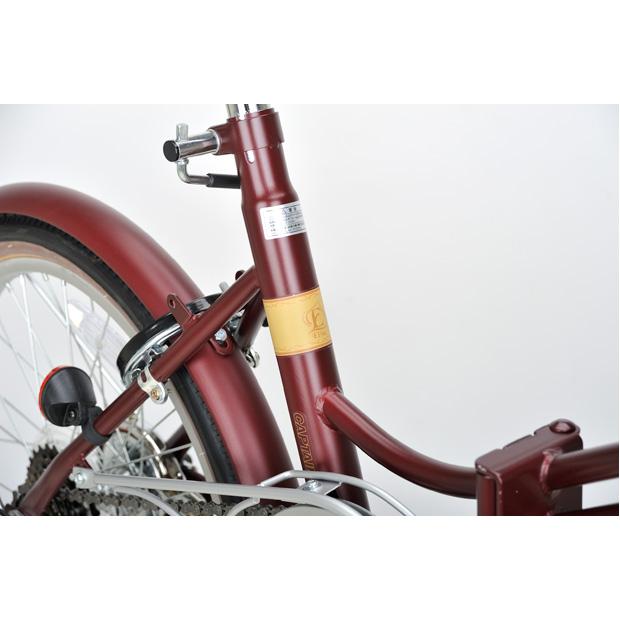 エリーサFDB206 20インチ 折りたたみ自転車【CS-BK】