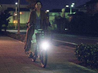 エナシス ベビー 203-L 20インチ 3人乗り対応 電動自転車
